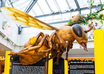 Bienennachbildung auf rotierender Achse