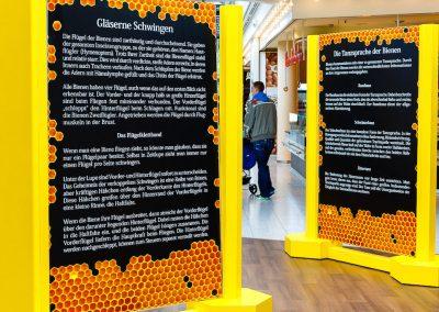 Ausstellungstafeln mit Informationen über Bienen