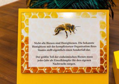 Informationstafel Honigbienen