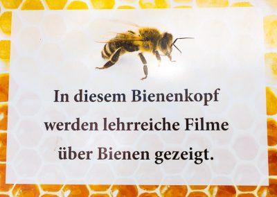 DIN A3 Hinweistafel zum Bienenkopf mit Lehrfilmen
